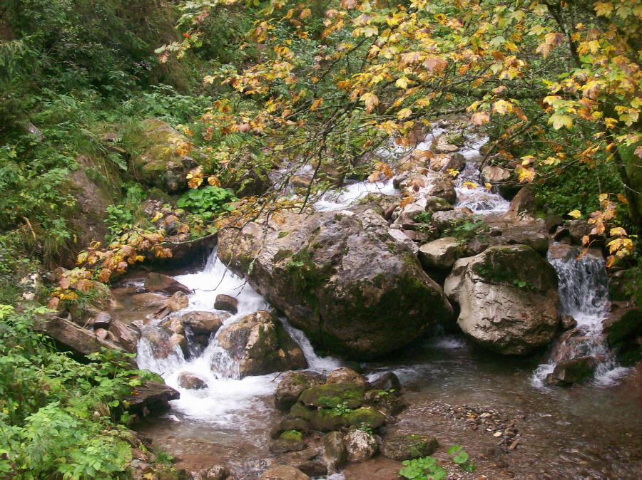 Ecomuseo monte coglians grotta genzianella for Quanto costa un uomo in grotta